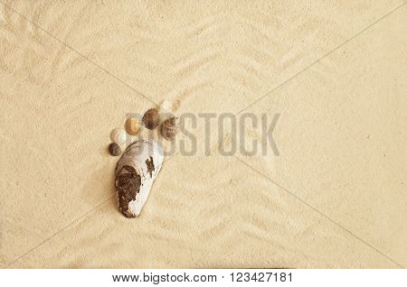 Sea Shells Footprint