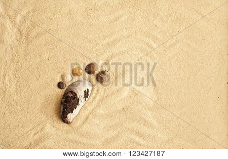 sea shells footprint on a sand in summer beach