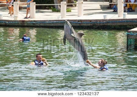 PLAYA DEL CARMEN, MEXICO - JULY 14, 2011: Unidentified people swimming with dolphins at Caribbean Sea of Mexico. It's a largest dolphin habitat in the Mayan Riviera and popular tourist destination.