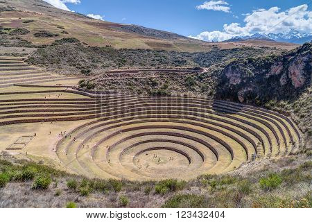 Moray - Inca Agricultural Terraces Near Maras,  Peru