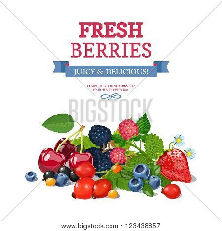 Delicious fresh wild and garden berries mix  for daily vitamins consumption colorful background poster abstract vector illustration