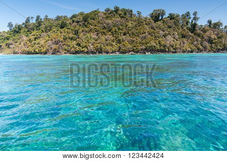 Beautiful Sea Of Surin Island