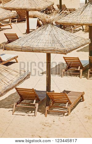 Umbrellas and Sun Loungers on the Beach