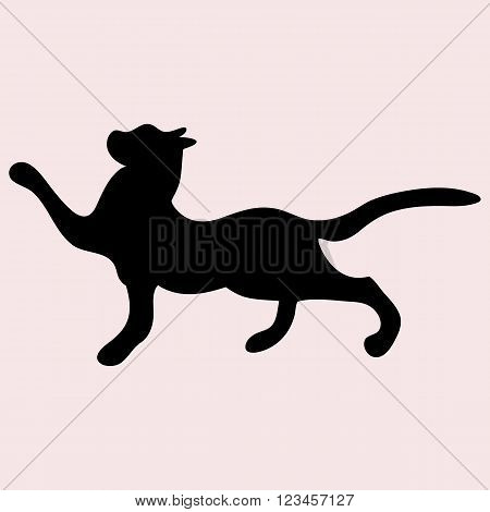 Black cat silhouette on a white the background