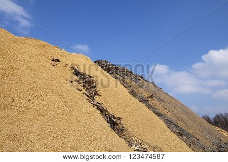 Pile of wood chips and sawdust used for biofuel manufacturing. Wood chips is a renewable and sustainable energy source for heating.