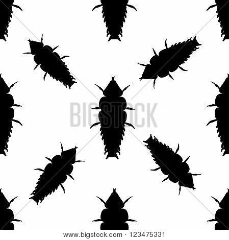 Seamless pattern with Trilobite beetle Duliticola Platerodrilus. hand-drawn Trilobite beetle. . Vector illustration
