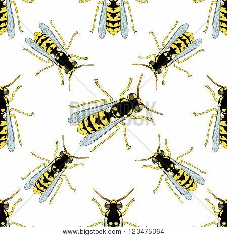 Seamless pattern with Wasp . hand-drawn Wasp . Vector illustration