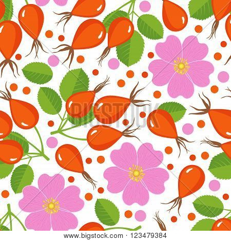 Seamless pattern with rose hip. Design for paper or textile. Berries on white background. Vector illustration
