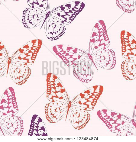 High detailed colorful butterflies vector seamless background