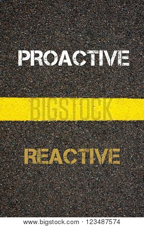 Antonym decision concept of REACTIVE versus PROACTIVE written over tarmac, road marking yellow paint separating line between words