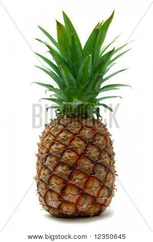 isolated pineapple on white background