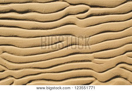 The wavy patterns formed by water on sand