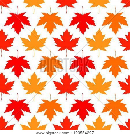 Vector seamless wallpaper. Autumn maple leaves of different colors on a white background