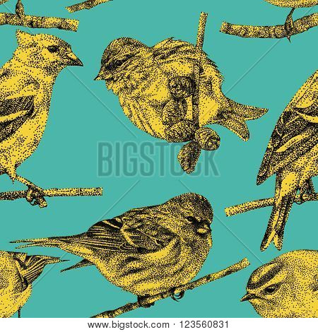 Seamless pattern with different birds drawn by hand with black ink. Graphic drawing, pointillism technique. Can be used for pattern fills, wallpapers, web 