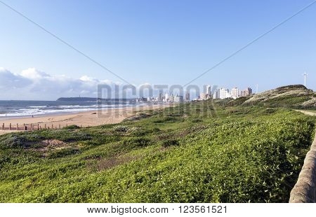 Rehabilitated Dunes With Hotels In Background, Durban South Africa