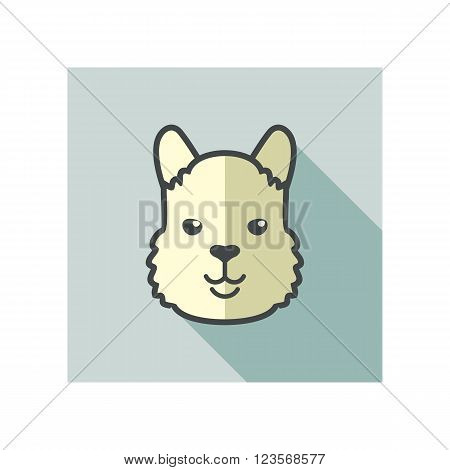 Lama alpaca guanaco flat icon. Animal head vector symbol eps 10