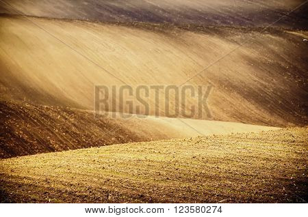 Earthy abstract natural sunny agricultural  background with hills and waves