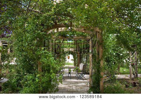 Pergola patio and rose garden in the park