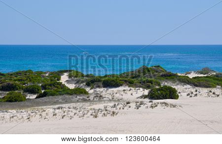 Turquoise Indian Ocean seascape view from vegetated dunes on the coast of Lancelin, Western Australia.