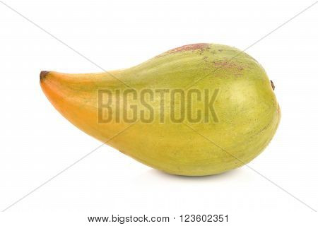 Pouteria campechiana on white background , fruit,