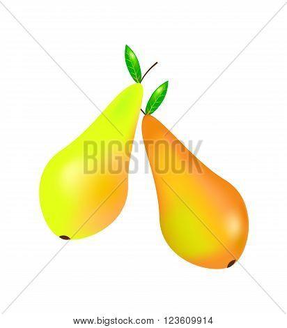Two yellow orange pears on white background