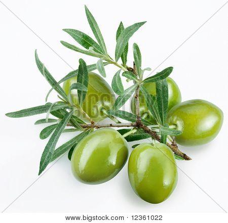 aceitunas verdes con una rama sobre un fondo blanco