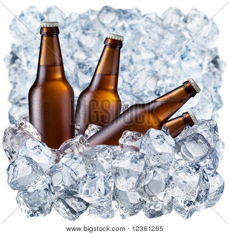 Flaschen Bier auf Eis
