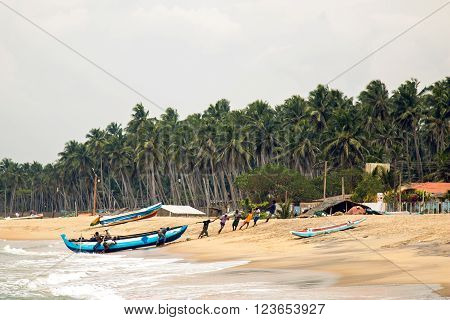 Maravila, Sri Lanka,  - February 15, 2016 :  Local fishermen in the morning pulling a boat to shore after fishing nets off the coast of the island