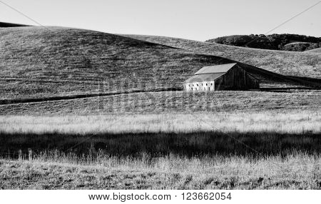 Old rustic barn located in meadow lands in the hills of California