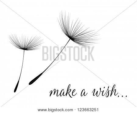 Make a wish card with dandelion fluff. Vector illustration