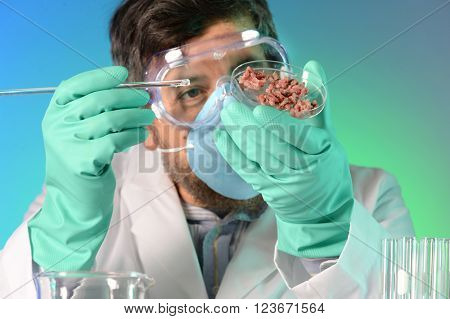 Scientist testing meat on Petri dish in laboratory