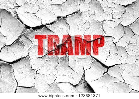 Grunge cracked tramp sign background with some soft smooth lines