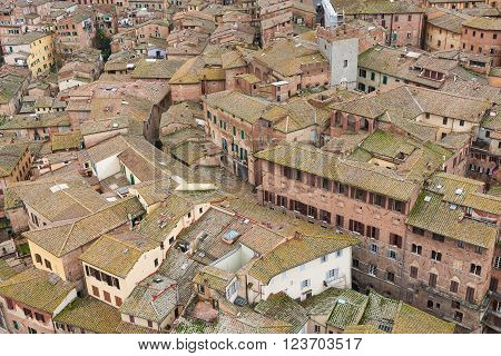 View Of Siena Old Town
