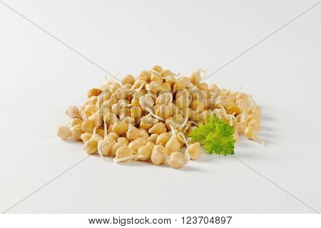 Heap of sprouted chick peas