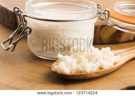 Organic probiotic - milk kefir grains, macro