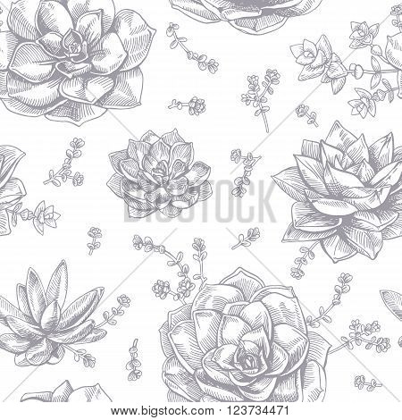 Hand-drawing ink succulents. Seamless pattern. Vector graphic succulents on white background.