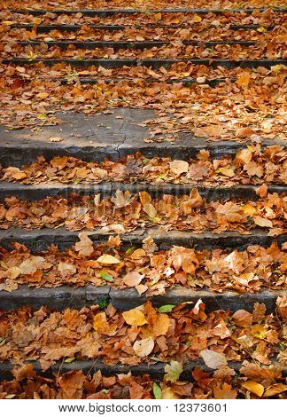 Piles of autumn leaves accumulate on steps - background image.