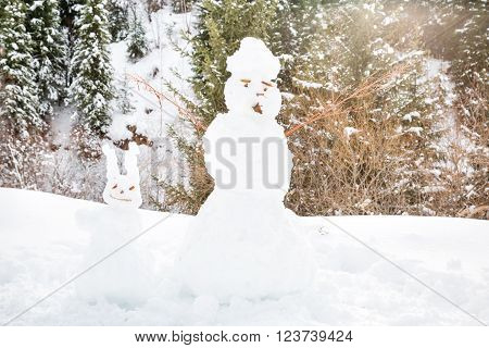 Cute snowman standing in winter landscape on nature