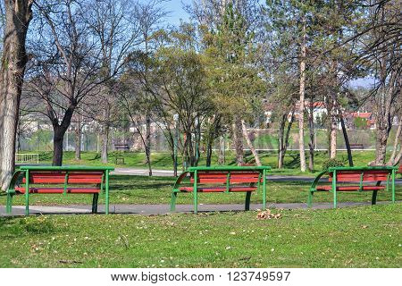 Three red benches under the trees in the city park