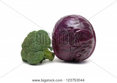 broccoli and red cabbage isolated on white background. horizontal photo.