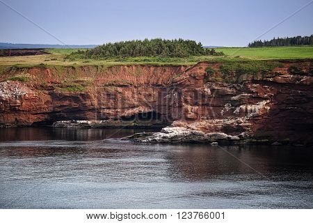 High sandstone cliffs on the north side of Prince Edward Island, Canada