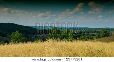 landscape in the hills and deciduous forest summer season