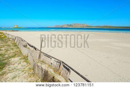 famous La Pelosa beach shoreline in Sardinia