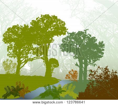 Panoramic forest landscape with stream, bracken and trees