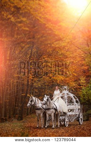 Young wedding romantic bride in white dress in cinderella carriage with horses in autumn deep orange forest outdoor on natural background vertical picture