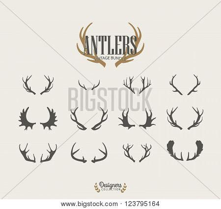 12 Deer antlers. vector vintage illustration