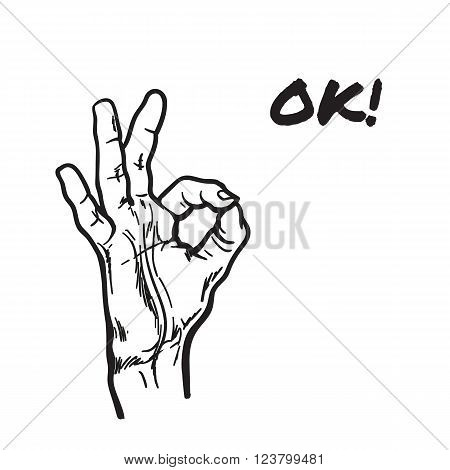 Hand showing OK. Painted vector hand. All perfectly. Everything is fine. Good. Fingers do the ring. OK symbol. Isolated hand. One hand. Painted illustration of hands. Symbol everything is fine.