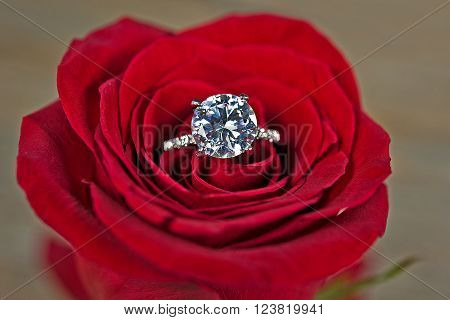 Close up of a diamond ring in a red rose. ** Note: Visible grain at 100%, best at smaller sizes