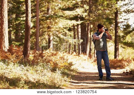 Man taking photographs in forest with copyspace, California, USA