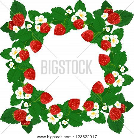 Frame design with strawberries leaves and flowers isolated on white background. Strawberry vector frame wreath design with copy space